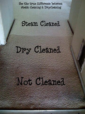 Carpet Upholstery Cleaning Guelph Fergus Elora Rockwood